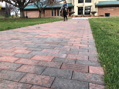 Legacy walk pathway
